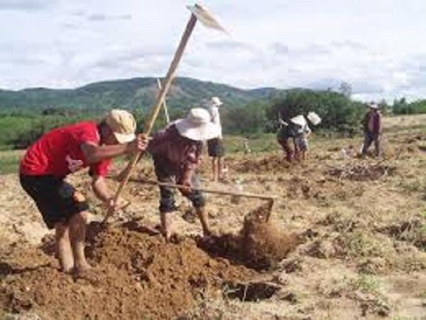 Mơ thấy đào đất có điềm báo gì? đánh con số nào?
